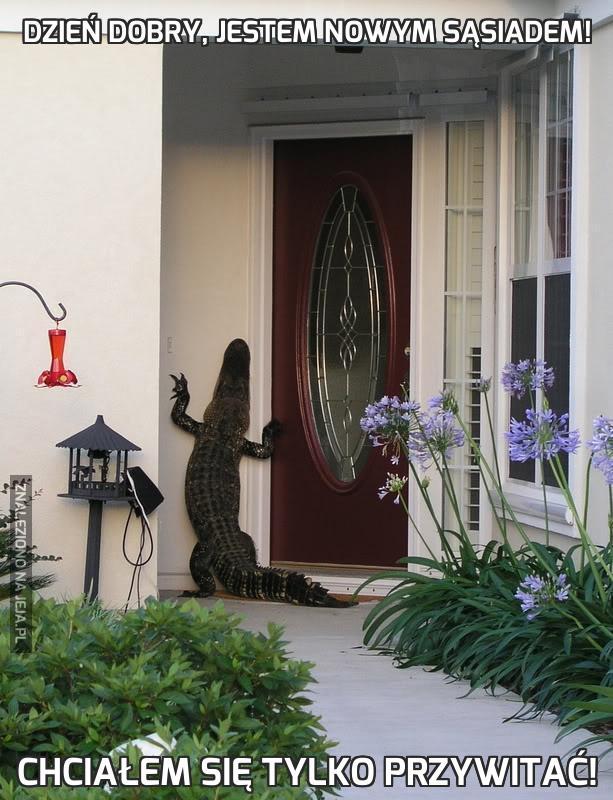 Dzień dobry, jestem nowym sąsiadem!
