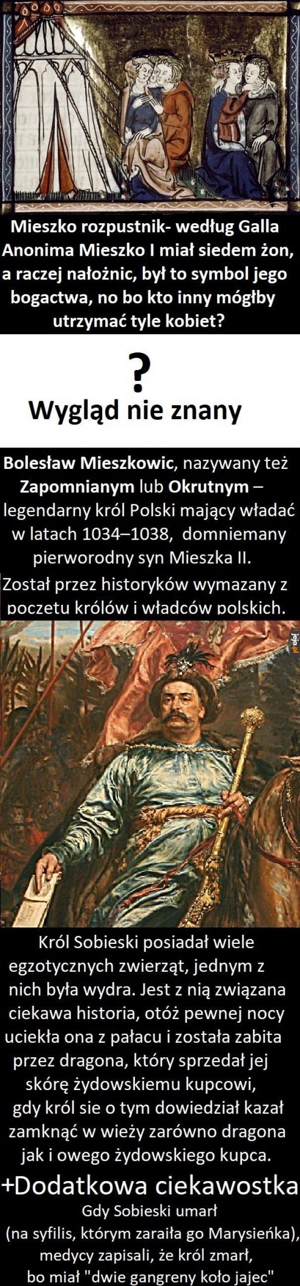 Ciekawostki o władcach i królach Polskich
