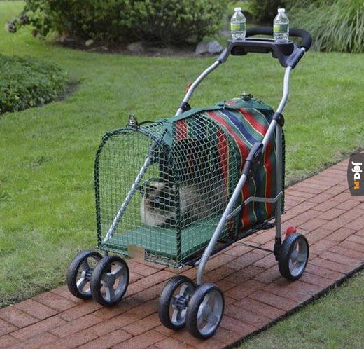 """Wózek dla kota """"Zrób to sam"""""""