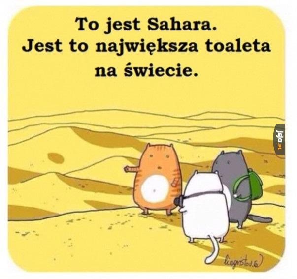 Największa toaleta świata. Sahara.