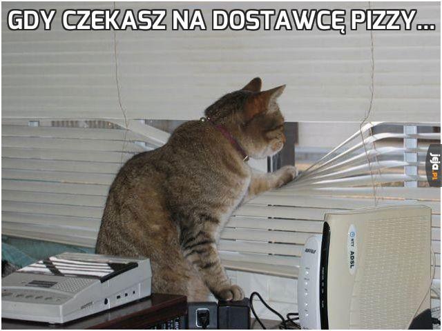 Gdy czekasz na dostawcę pizzy...