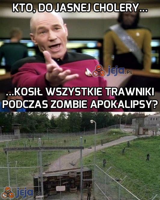 To musi być sprawka zombie-ogrodników!
