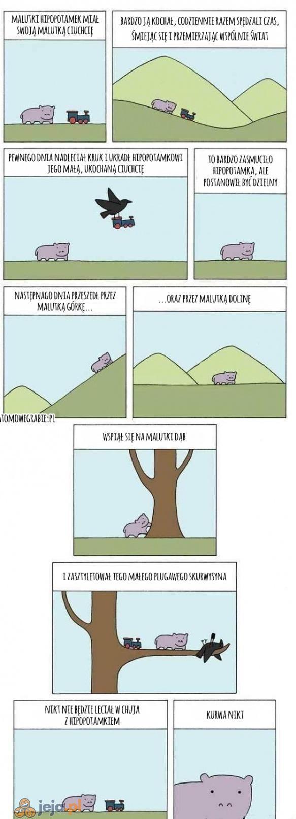 Hipopotam i ciuchcia