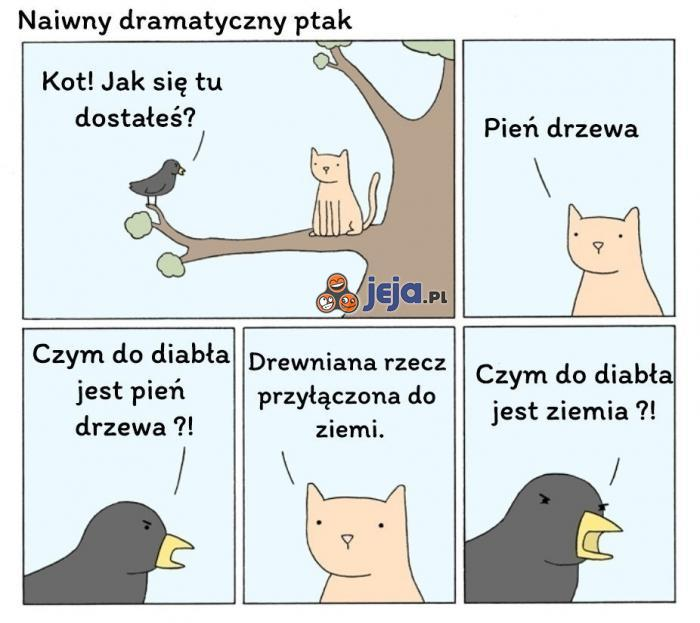 Naiwny dramatyczny ptak