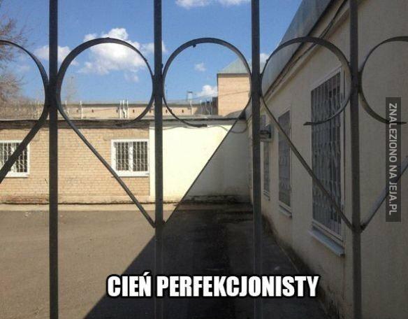 Cień perfekcjonisty