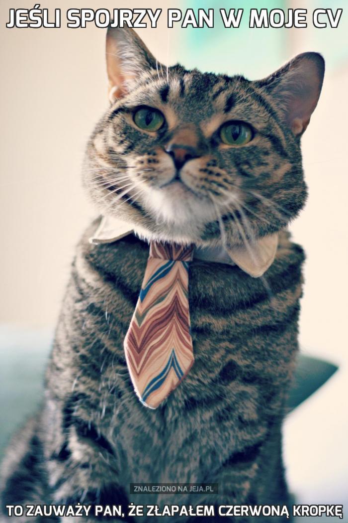 Jeśli spojrzy pan w moje CV