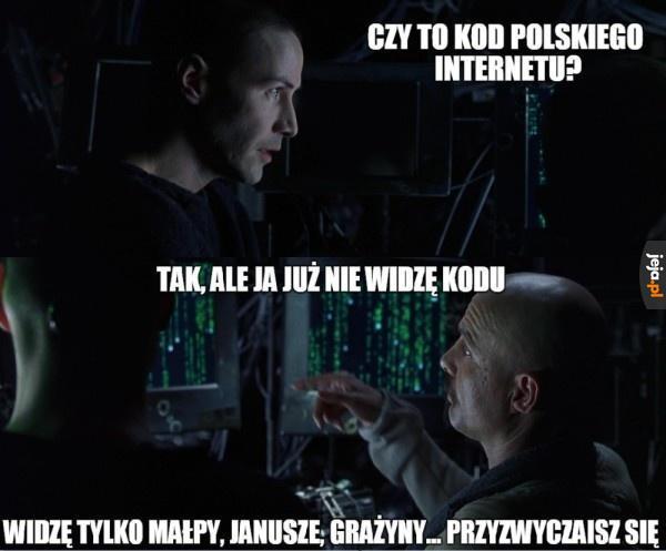 Kod polskiego internetu