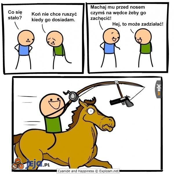 Zachęta dla konia