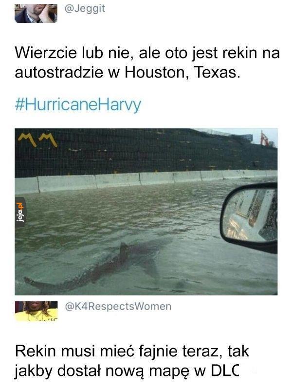 Tymczasem w Houston