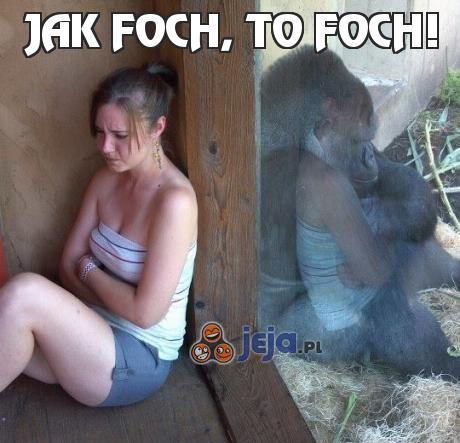 Jak foch, to foch!