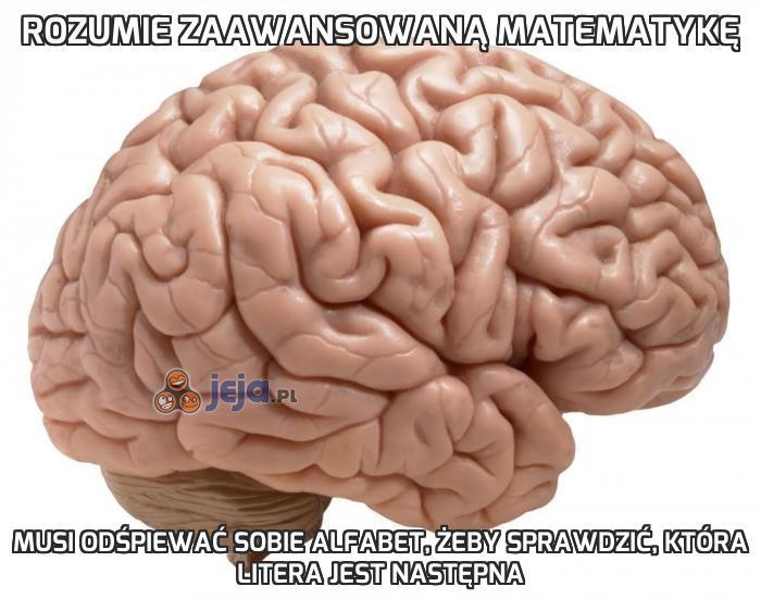 Rozumie zaawansowaną matematykę
