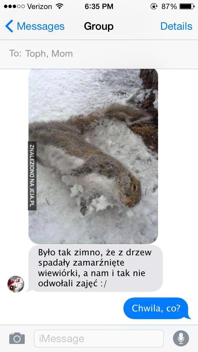 Biedna wiewiórka, a kto pamięta o uczniach?