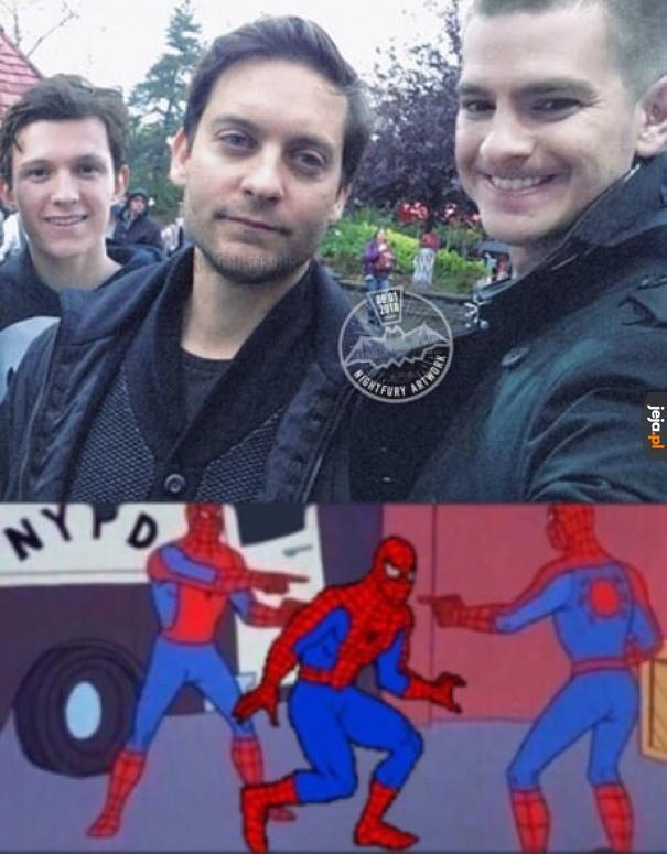 Spidermanocepcja