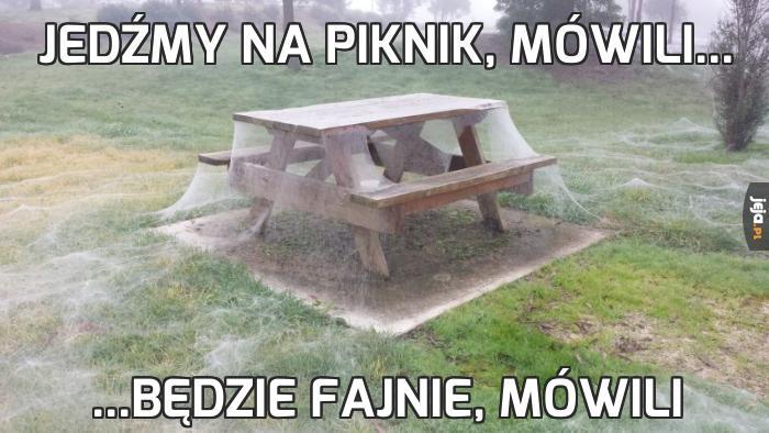 Jedźmy na piknik, mówili...