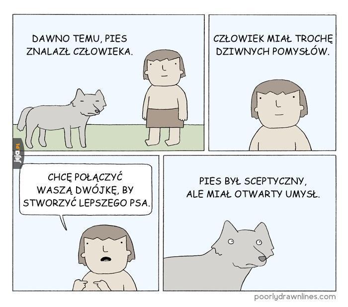 Skąd się wzięły rasy psów