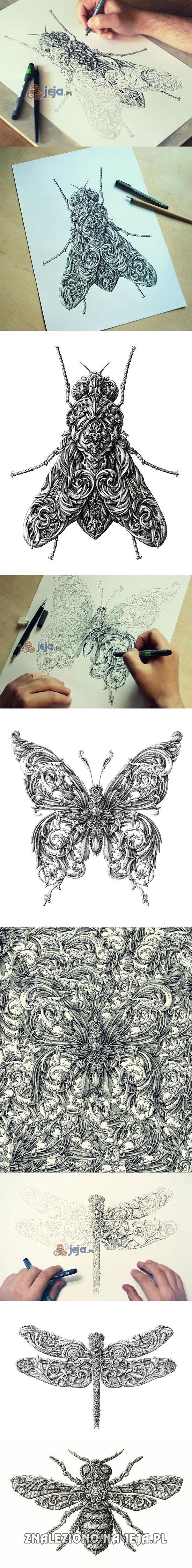 Rysunki owadów w stylu renesansowym