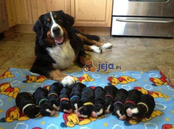 Szczęśliwa mama