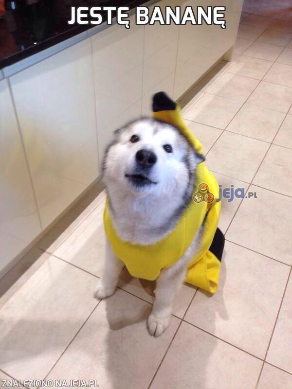 Jestę bananę
