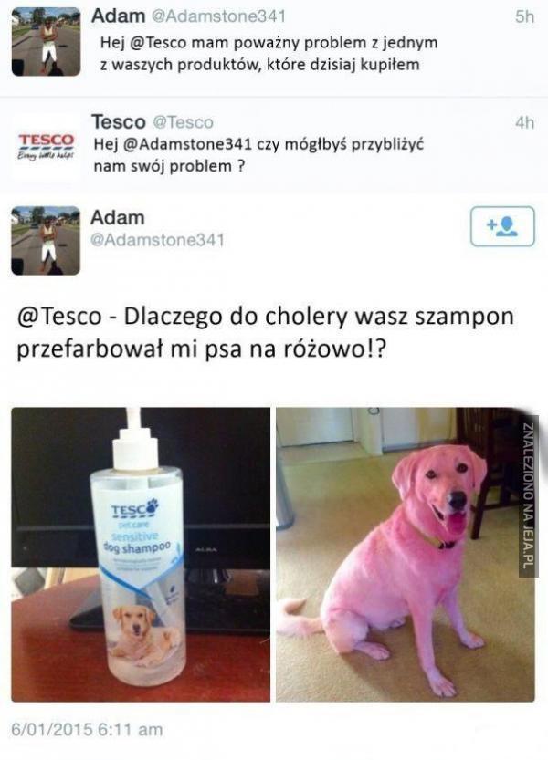 Problem z szamponem z Tesco