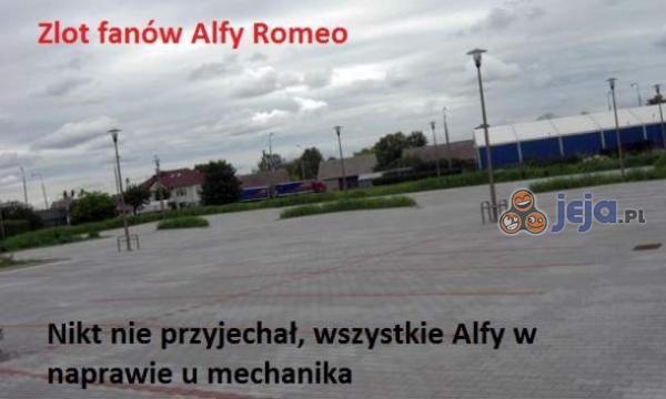 86272_zlot-fanow-alfy-romeo.jpg