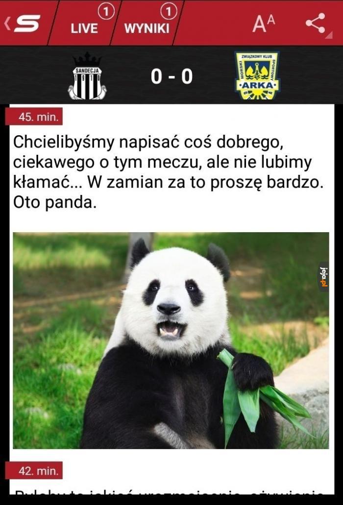 Oto panda