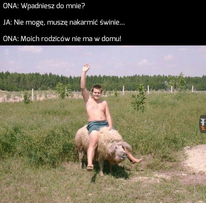 Pig Rider