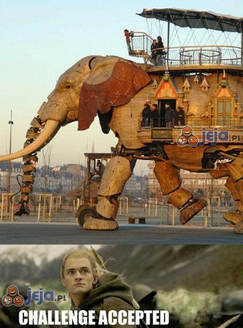 Legolas do dzieła!