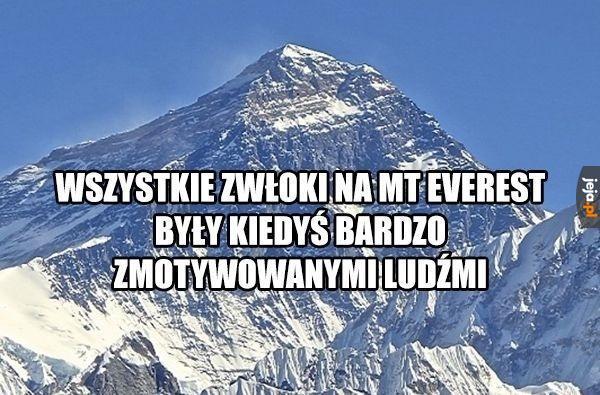 Góry lubią jeść