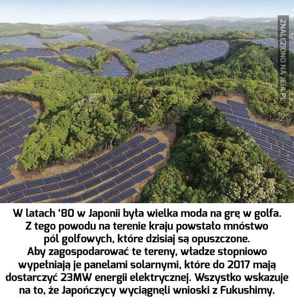 Brawo Japonia, środowisko przede wszystkim!