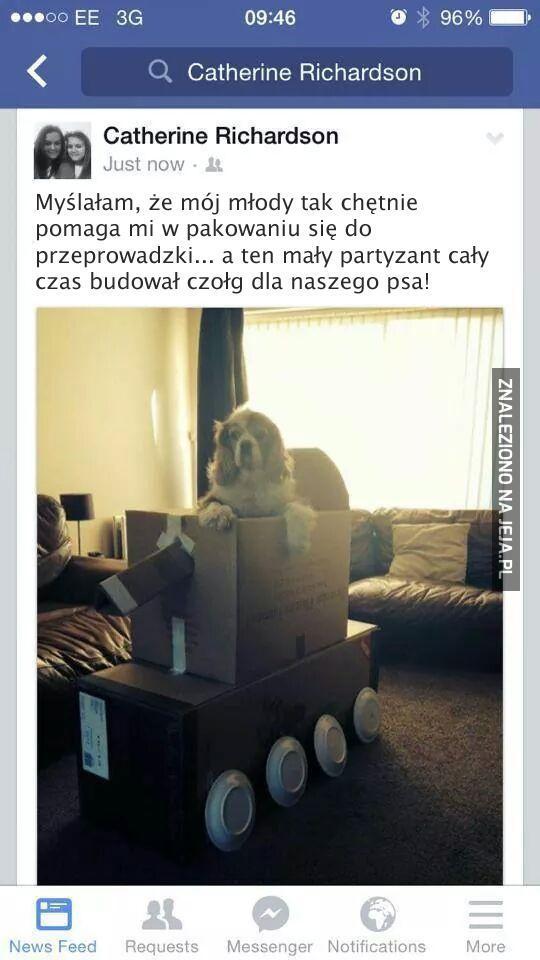 Jeden pancerny i pies