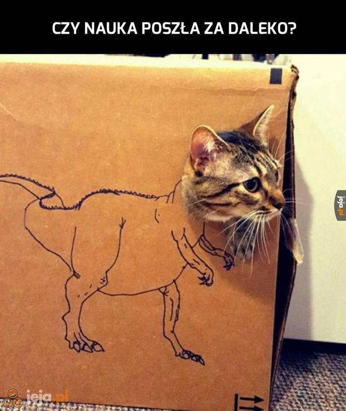Oto prawdziwy kotozaur