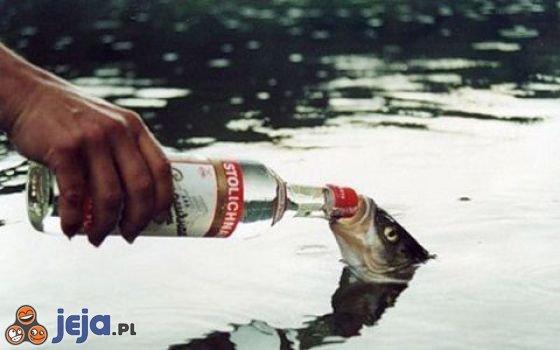 Piłeś? Nie płyń!