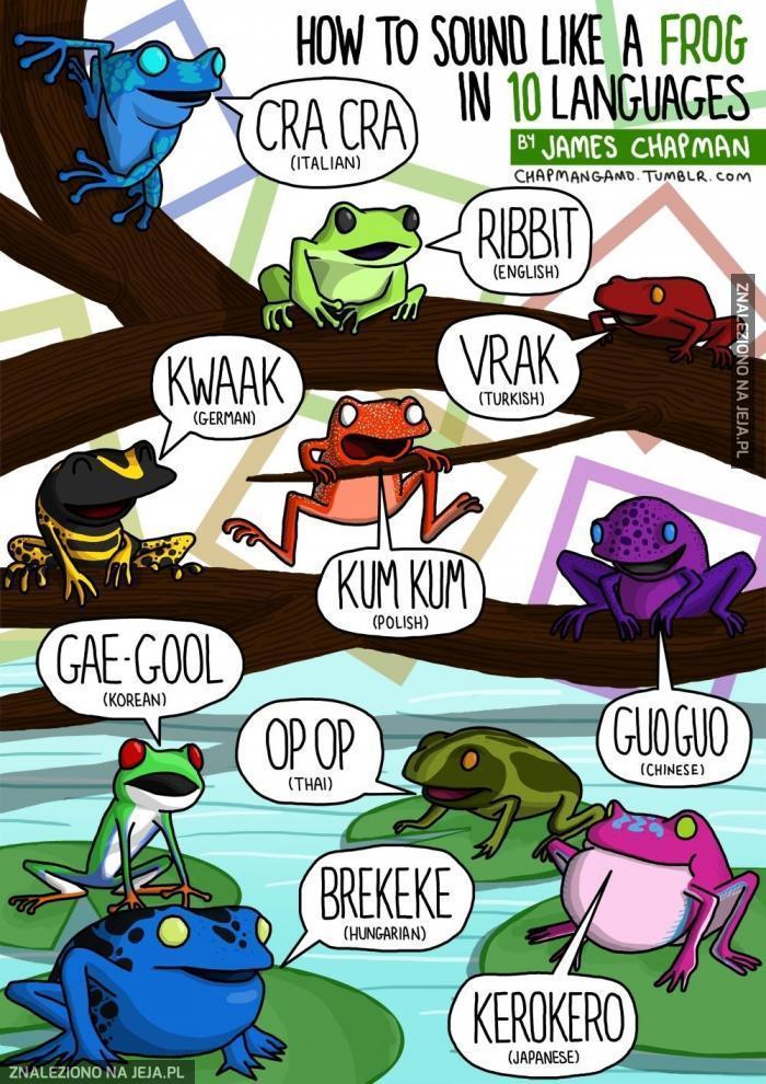 Tak kumka żaba w 10 różnych językach