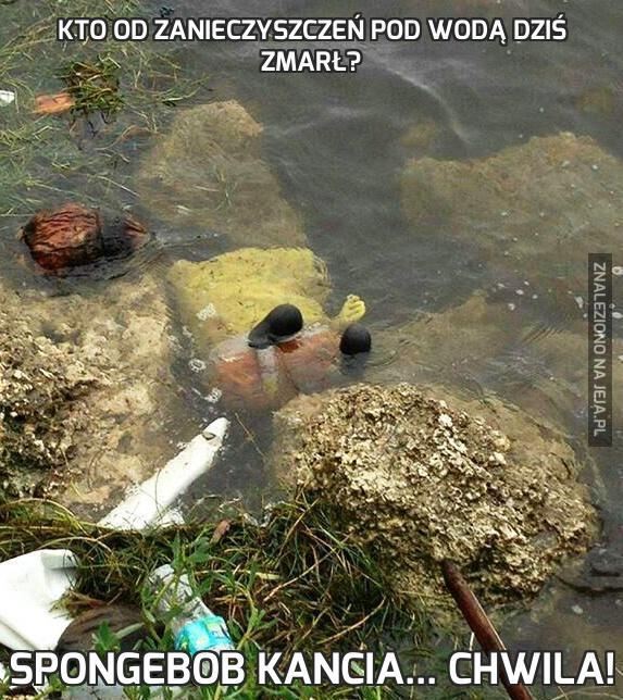 Kto od zanieczyszczeń pod wodą dziś zmarł?