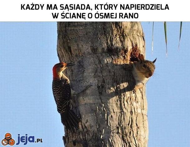 W naturze nic nie ginie