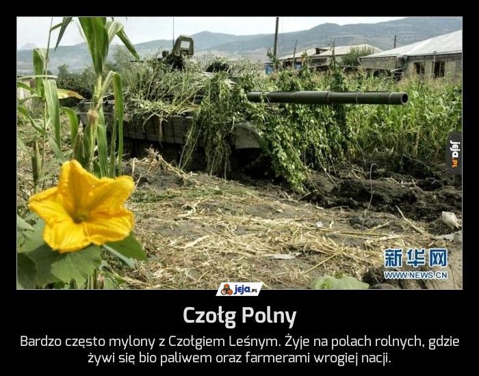 Czołg Polny