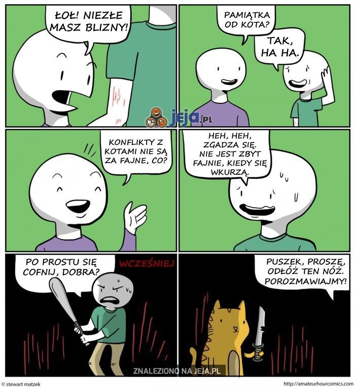 Konflikty z kotami