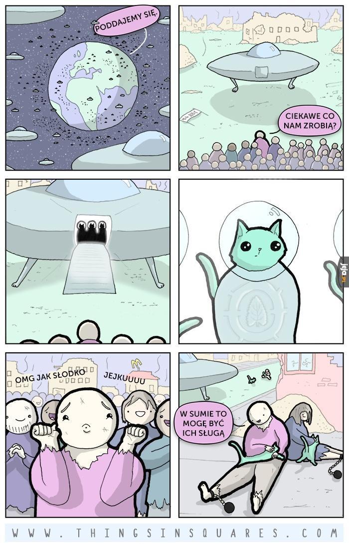 Inwazja kotów z kosmosu