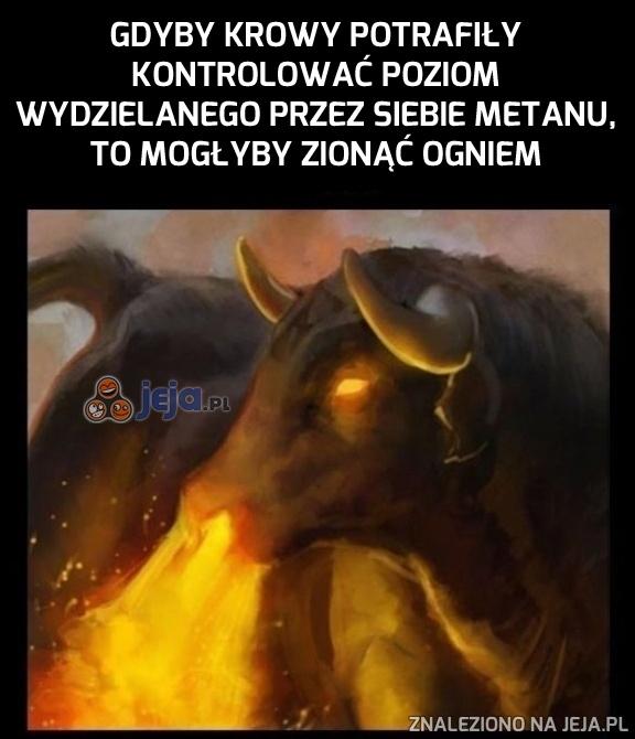 Krowy zionące ogniem?