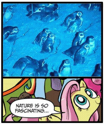 Natura jest taka fascynująca