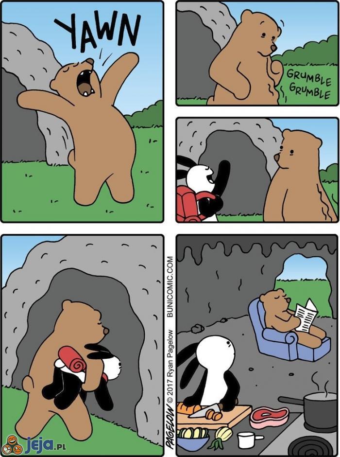 Niedźwiedzie uznały, że bardziej opłaca się porywać turystów