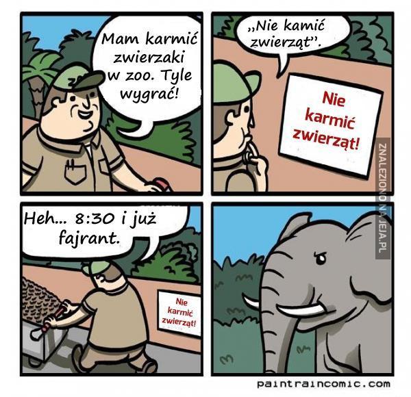 Praca w zoo może być taka łatwa