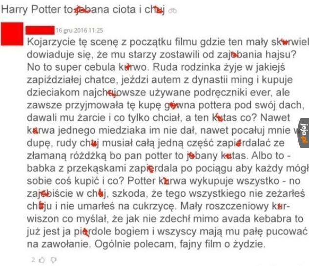 Harry Potter w pigułce