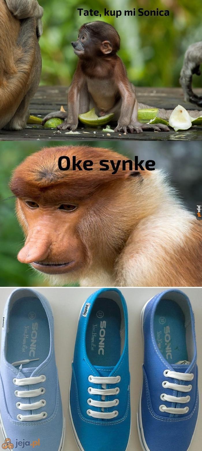 Tate, to nie ten Sonic...