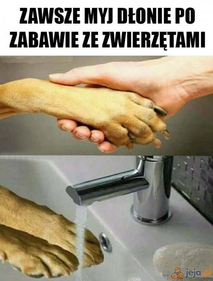 Higiena to podstawa