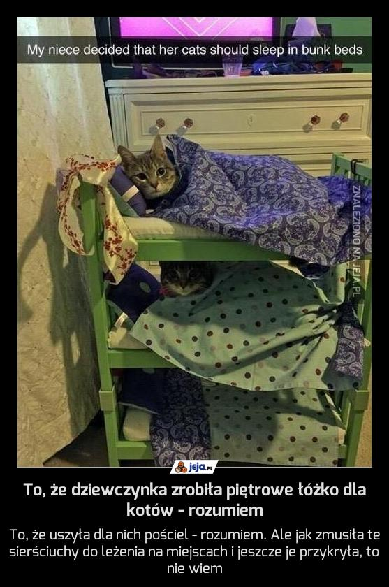 To, że dziewczynka zrobiła piętrowe łóżko dla kotów - rozumiem