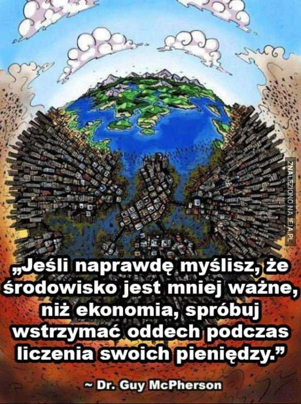 Środowisko vs ekonomia