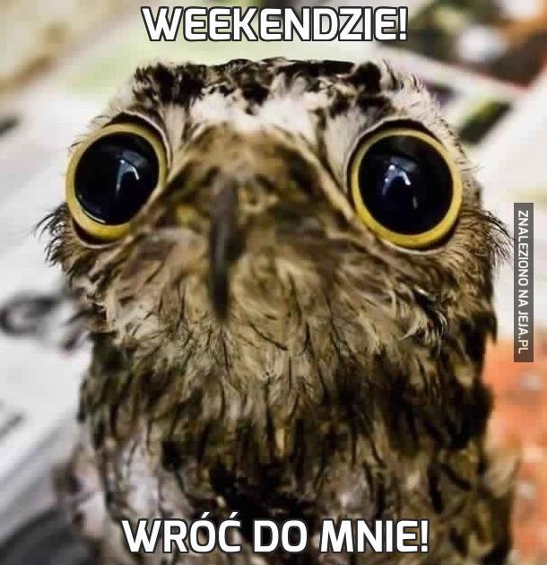 Weekendzie!