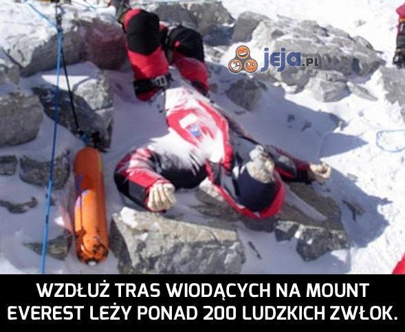 Muszę odwołać wycieczkę na Mount Everest...