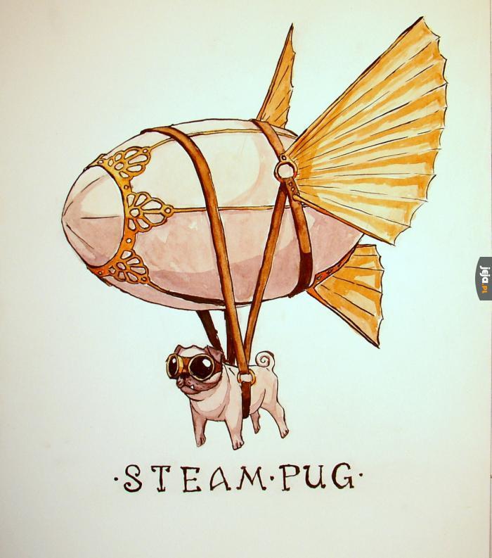 Steam pug!